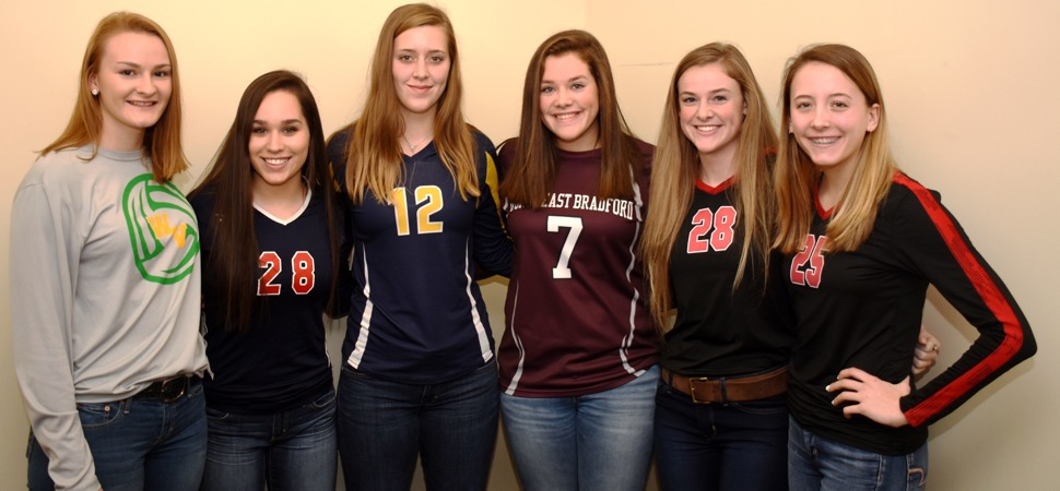 Northern Tier League Volleyball All-Star teams